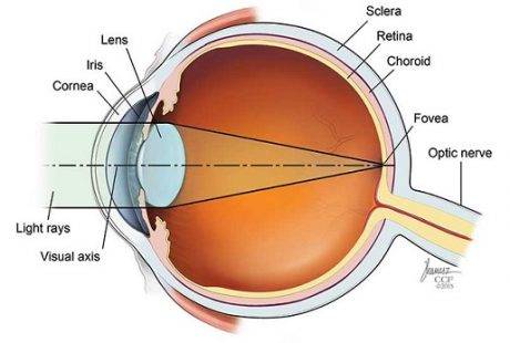 FAQ about farsightedness