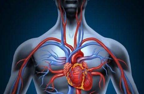 تعرف على أفضل طرق تنشيط الدورة الدموية